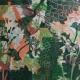 Gruen3, 70 x 110 cm, Malerei Linolschnitt Collage auf Leinwand, Iris Flexer 2019